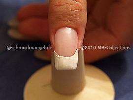 Nail Art Motivo 228