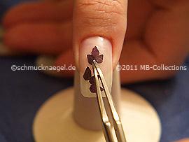Pétalos de flores secas y pinzeta