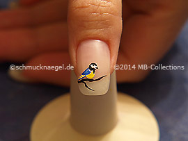 Nail Art Motivo 378