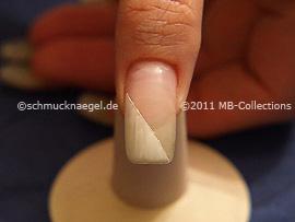 Nail art motif 260